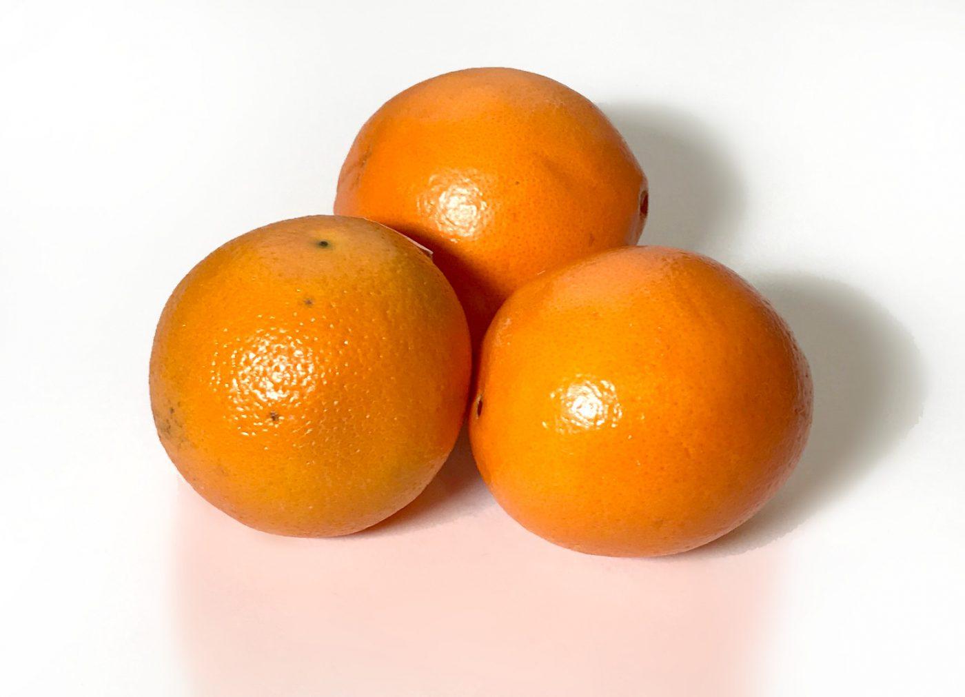 oranges FLtutor.com
